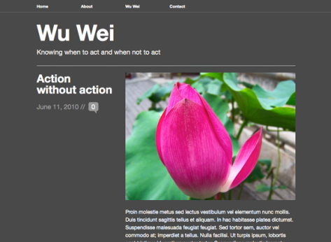 Wu Wei black theme